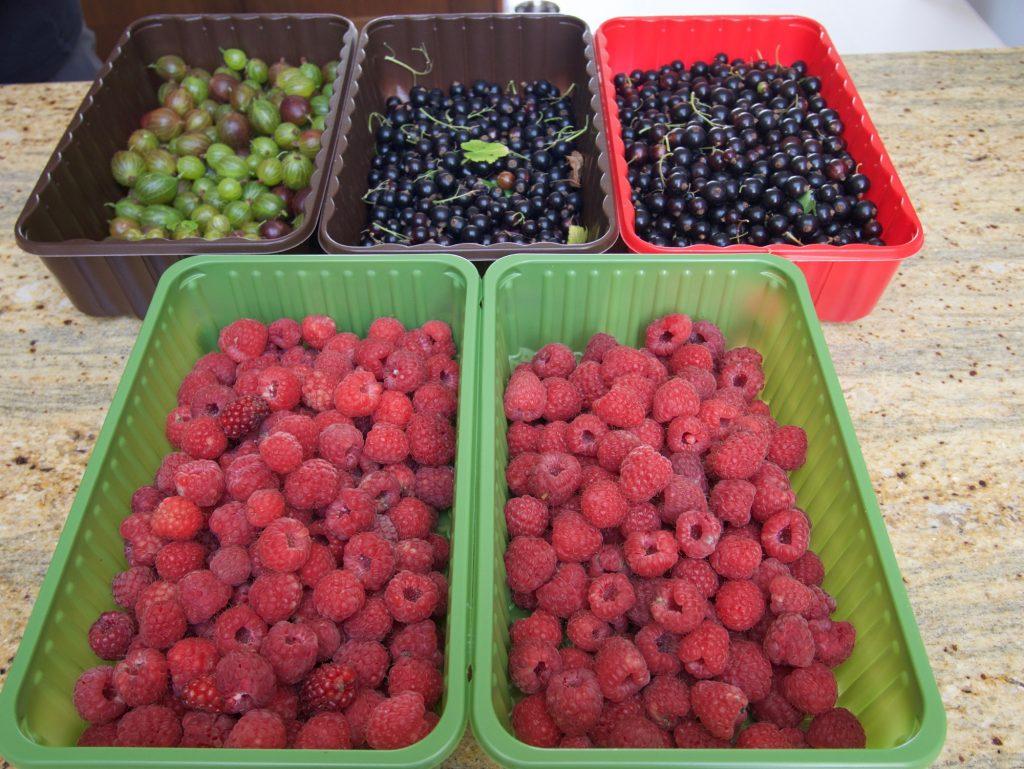 July Fruits