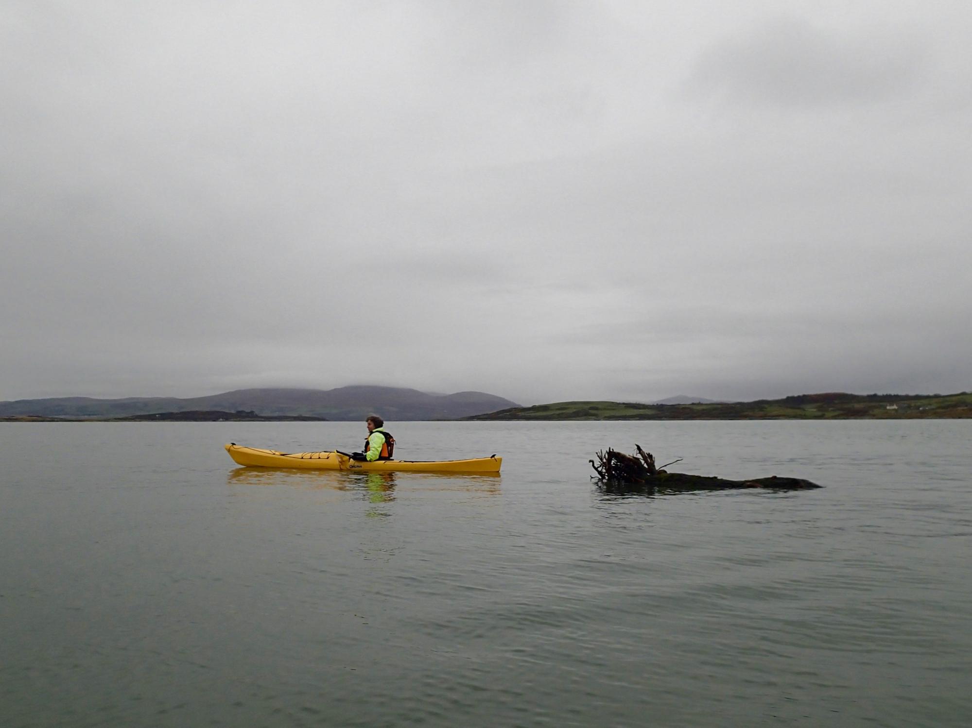 Kayak and Log