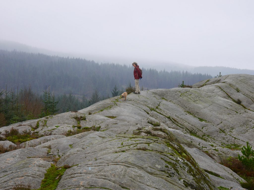 McMoab mountain bike trail
